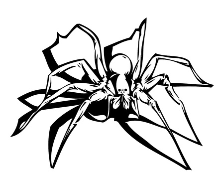 mygale: Spider
