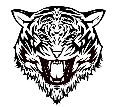 beauty and the beast: Tiger cat aggressive (vector)  Illustration