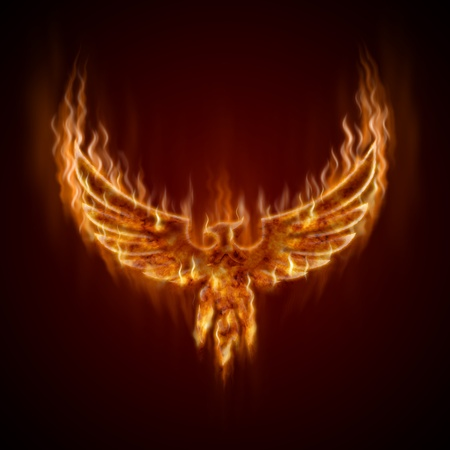 sea bird: Phoenix from fire with wings  Stock Photo