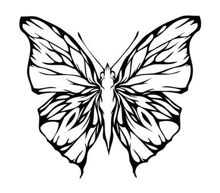 aerate: Nizza farfalla ariosa