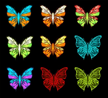 Color pallet of butterfly  Vector