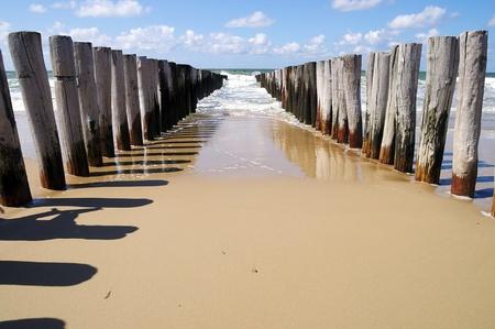 日当たりの良いヨーロッパのビーチに木製の防波堤 写真素材