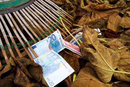 Fall of the Euro, raking in autumn, 1 Stock Photo