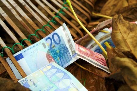 Fall of the Euro, raking in autumn, 2 photo