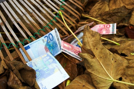 Fall of the Euro, raking in autumn, 3 Stock Photo