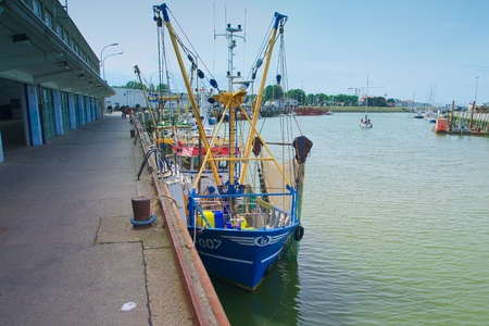 Fishing quota in North Sea forcing  fishing boats out of work. Editorial