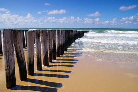 breakwaters on a sunny european beach, northsea in Domburg Holland
