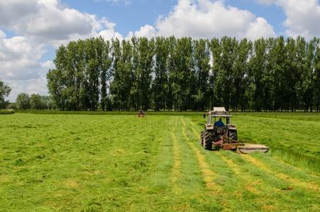 haymaking: Haymaking tracktors in Flanders field in spring Stock Photo