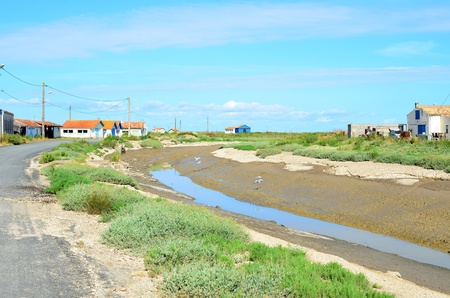 Site oestreicole oyster farming at Brouage, Charente Maritime, France Stock Photo - 22039343