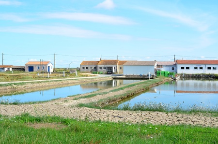 Site oestr�icole oyster farming at Brouage, Charente Maritime, France Stock Photo