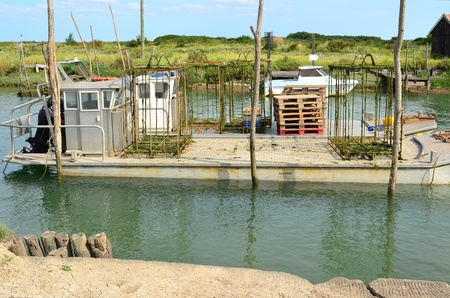 La Tremblade, site ostriecole,  Oyster farming harbour, Charente Maritime, France Stock Photo