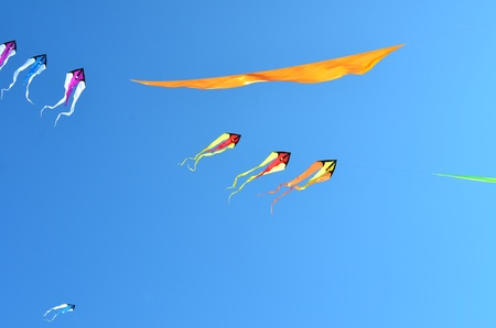 wildwood: Flying kites in a clear blue sky Stock Photo