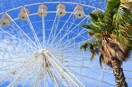 azur: Ferris wheel and palm trees at the cote azur, Provence, France