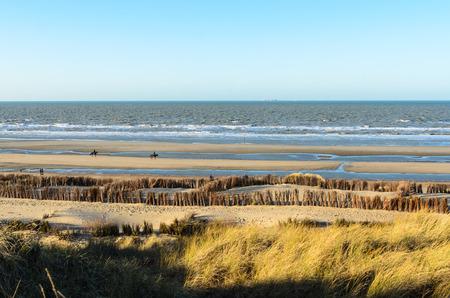 ベルギーの北海で晴れた冬の日に海岸を歩いてください。
