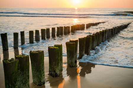 Breakwaters in waves on the beach at the north sea in Domburg Holland in the evening sun