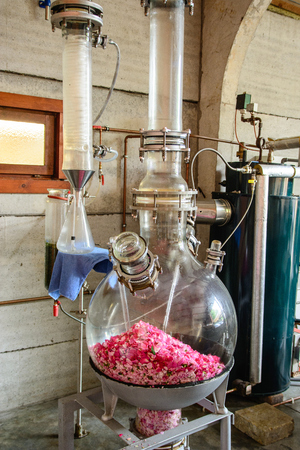 still, distillation of aromatic rose oil