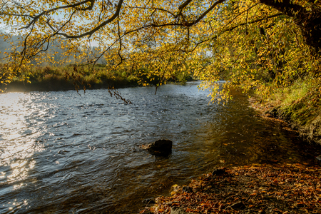 Ourthe river in Belgian Ardennes in autumn Stock Photo
