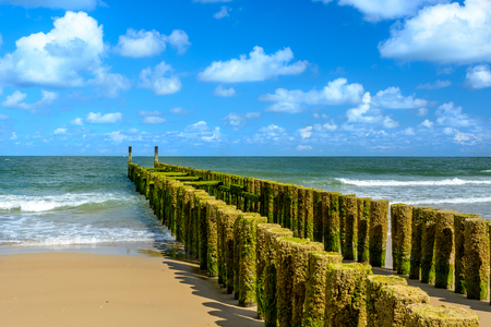Breakwaters on the beach in Domburg, Holland