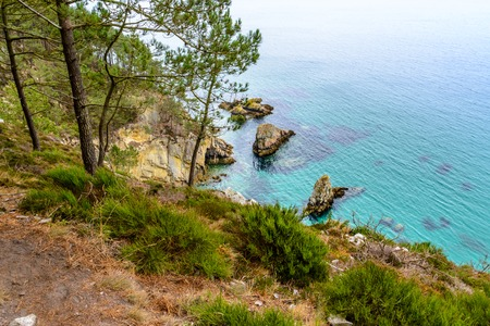 崖からの海の景色、フィニスター ブルターニュの都市