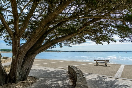 フランス ヴァンデ Jard-シュル-メールの近くのビーチの遊歩道