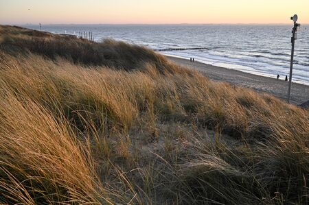 A walk on a winter beach in Vlissingen Holland