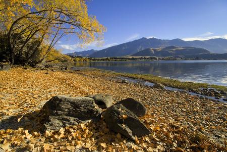 Autumn colors on lake Wanaka south island New Zealand Stock Photo
