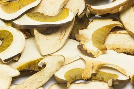 reticulatus: Dried mushrooms Boletus reticulatus,detail.