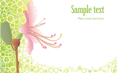 Background with pink flower Illustration