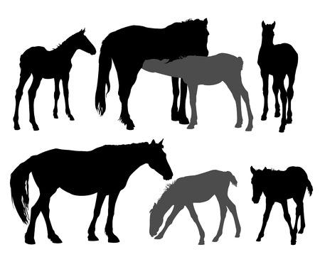 Siluetas de caballos  Ilustración de vector