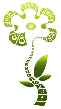 Green flower made from centimetric tape
