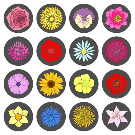Set of abstract flat flowers. Vector illustration Vector