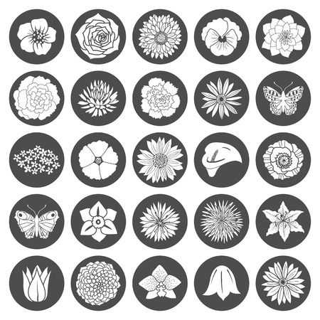orchid isolated: Set of abstract flat flowers. Vector illustration Illustration