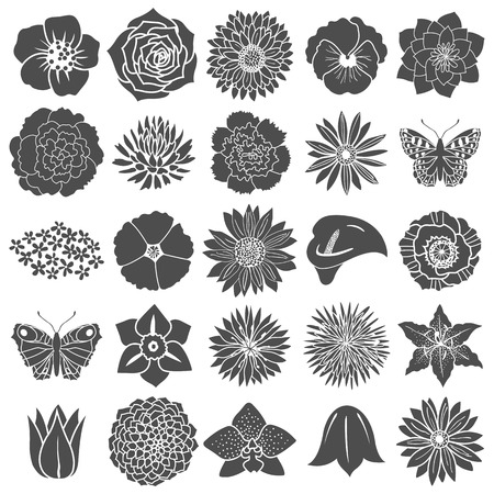 lily flowers collection: Set of abstract flat flowers. Vector illustration Illustration