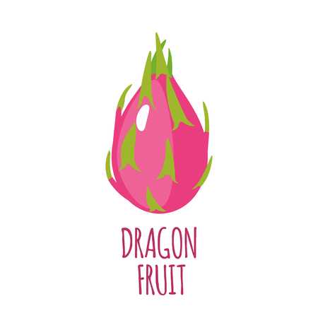 dragon fruit: Dragon fruit in flat style. Illustration