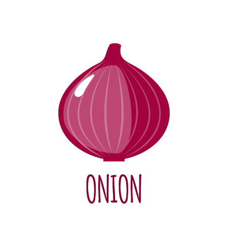vegetable background: Onion in flat style.