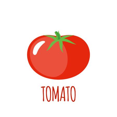 vegetable background: Tomato in flat style