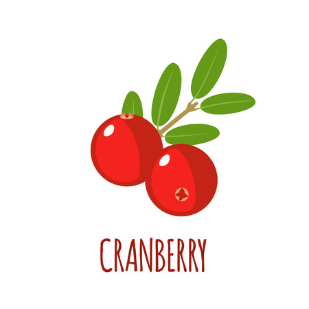 cranberry illustration: Cranberry in flat style. Cranberry vector logo. Cranberry icon. Isolated object. Natural food. Vector illustration. Cranberry on white background