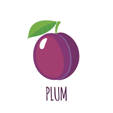 Plum in flat style. Plum vector logo. Plum icon. Isolated object. Natural food. Vector illustration. Plum on white background