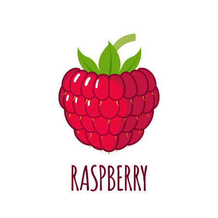 Raspberry in flat style. Raspberry vector logo. Raspberry icon. Isolated object. Natural food. Vector illustration. Raspberry on white background
