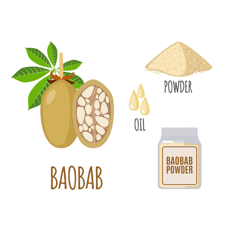 baobab: Superfood baobab set in flat style: baobab fruit, powder, oil. Organic healthy food. Isolated objects on white background. Vector illustration