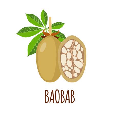 baobab: Baobab vector logo  in flat style. Baobab icon. Isolated object. Superfood baobab fruit. Vector illustration. Illustration