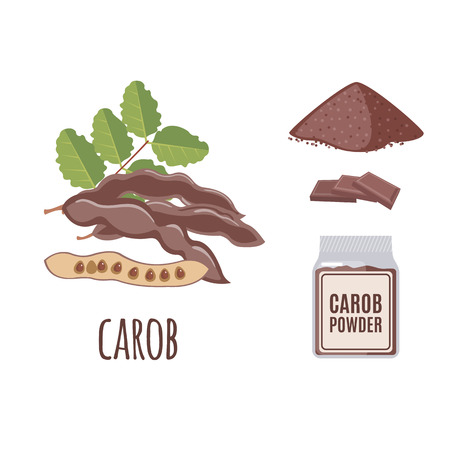 carob: Superfood carob set in flat style: carob seeds, powder. Organic healthy food. Isolated objects on white background. Vector illustration