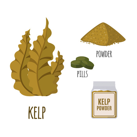 kelp: Superfood kelp set in flat style: algae, powder, pills. Organic healthy food. Isolated objects on white background. Vector illustration