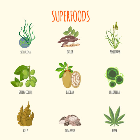psyllium: Set of superfoods in flat style. Healthy lifestyle. Fruits, vegetables, aglaes and herbs for health. Vector illustration Illustration