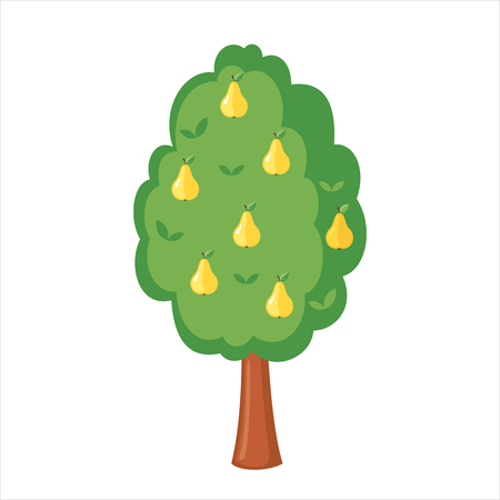 Green Pear tree full of yellow pears icon in flat style isolated on a white background. Vector illustration. Illustration