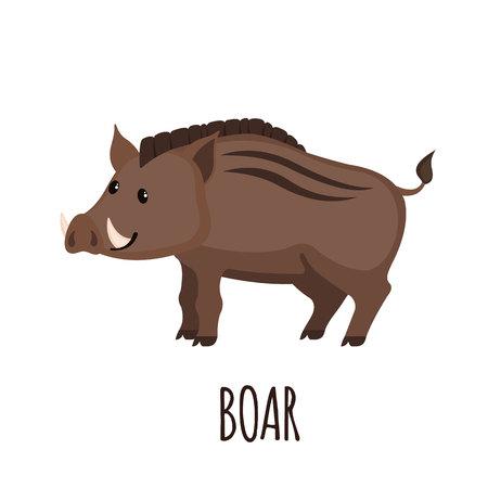 dangerous: Cute wild Boar in flat style. Illustration