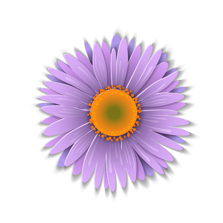 aster: Cute purple aster flower in paper art style isolated on white background. Vector illustration. Illustration