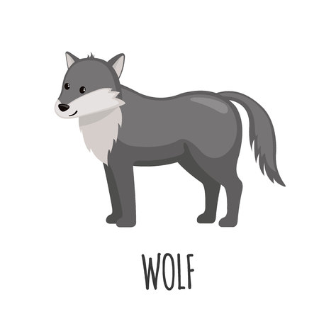 wildanimal: Cute Wolf in flat style isolated on white background. Vector illustration. Forest animal. Cartoon wolf. Illustration