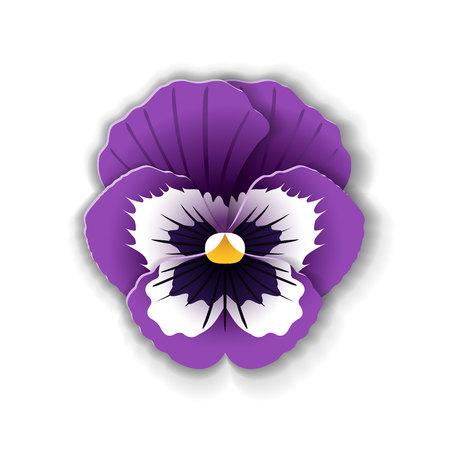 Nette Pansy Blume in Papier Kunst Stil isoliert auf weißem Hintergrund. Vektor-Illustration. Standard-Bild - 78024126