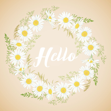Cute card with Chamomile flowers wreath on light background. Hello spring and summer. Vector illustration